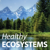 HealthyECOSYSTEMS 200